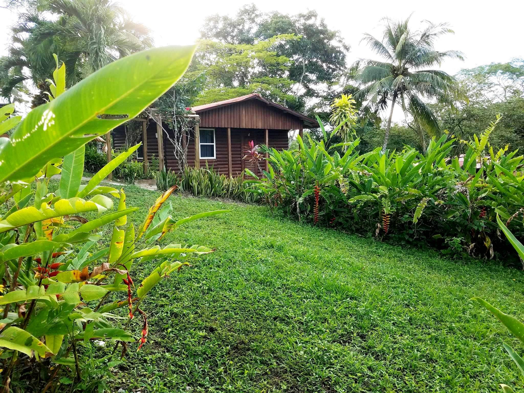 outside-cabin